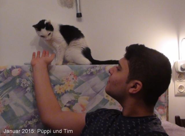 640-2015-01-Puepi+Tim