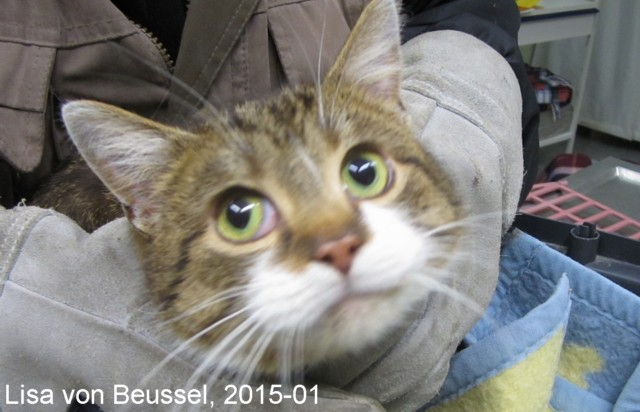 640-02-Lisa-Beussel-15-01