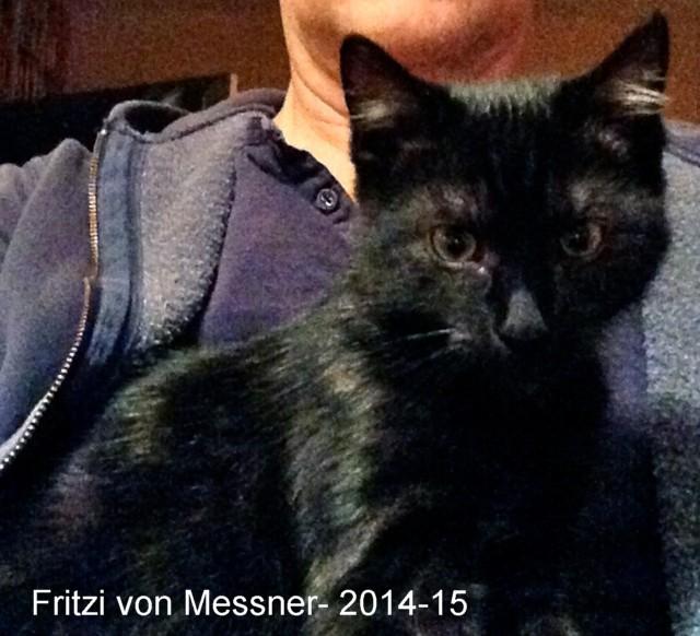 640-T-2015-02-Fritzi-Messner-2