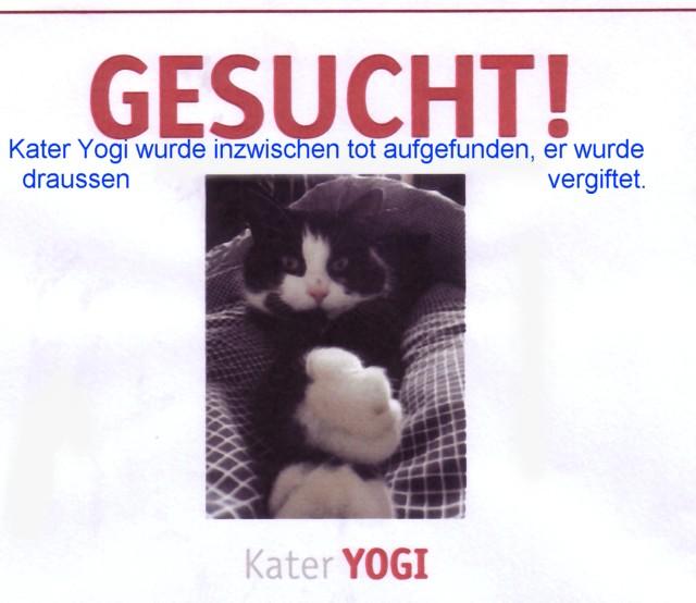 640-T-Yogi-tot-aufgefunden-2014