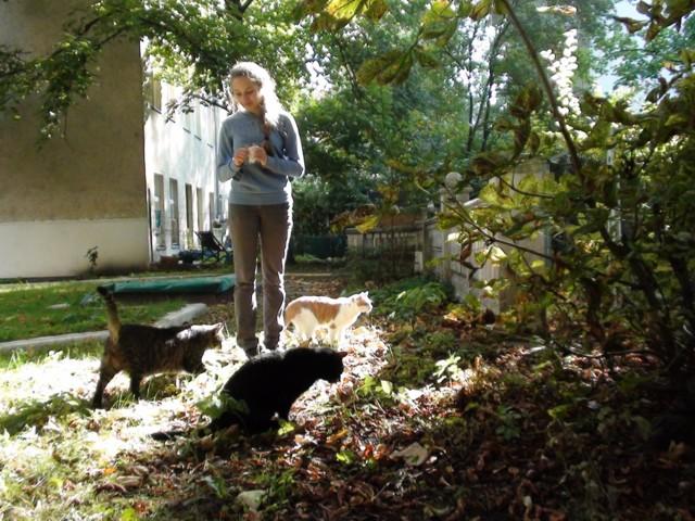 640-2012-07-Anna-Kater-Garten 016