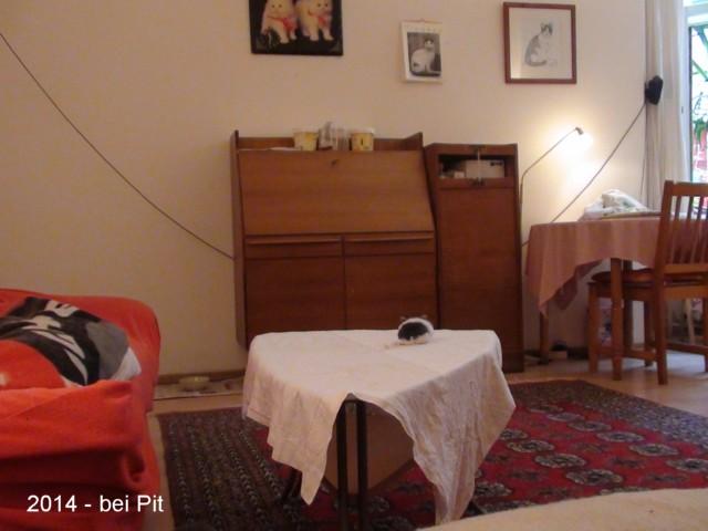 640-2014-09-Wohnung vorn Pit 007