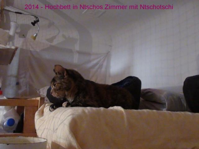 640-2014-09-hinten-Hochbett+Ntscho 021