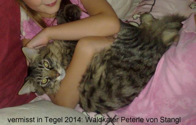 640-2014-Peterle-von-Stangl-10