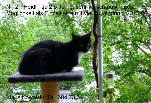 nr2-Heidi-vKlaus-201506-640