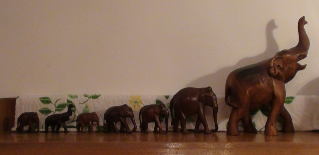 Balk-Elefantenherde-15