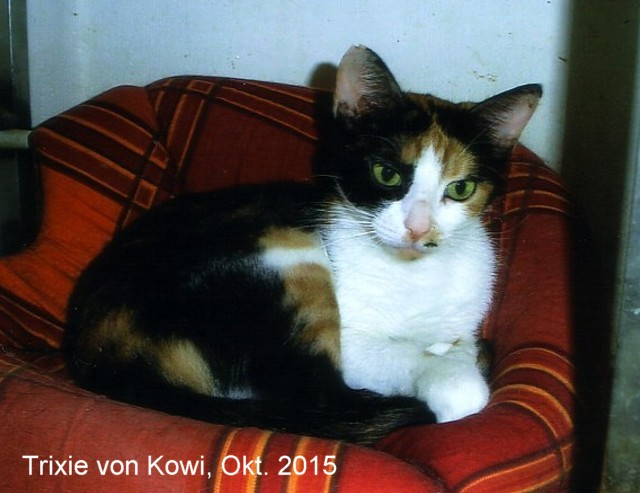 640-Trixie-Kowi-1510