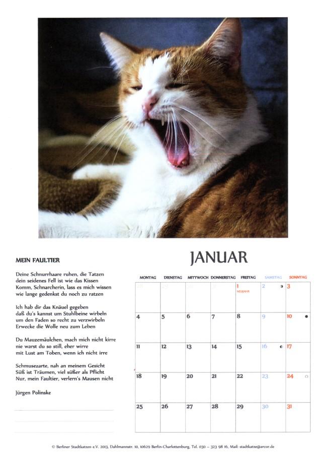 640-Kalender-16-S2