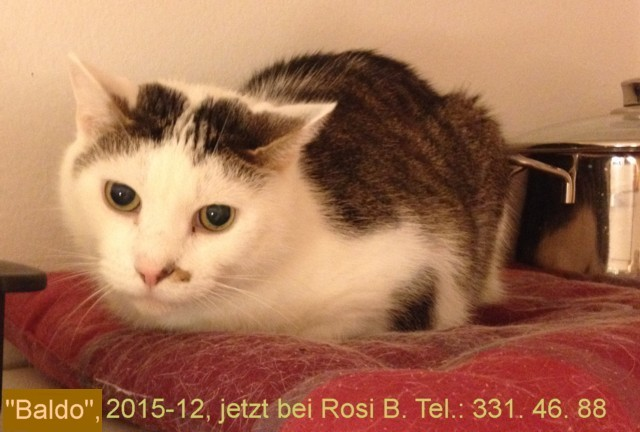 640-Rosi-Baldo-IMG_3941