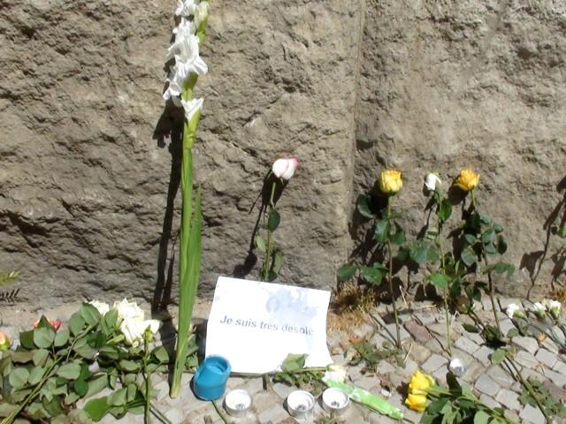 640-2016-07-15-Blumen-vorGrundschule